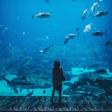 escape room Atlantis